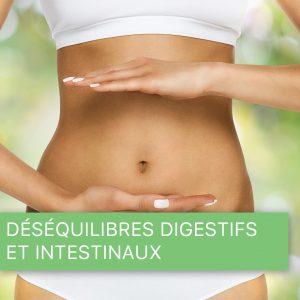 Déséquilibres digestifs et intestinaux